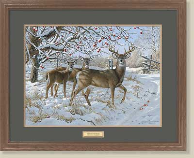 November Snowfall-Whitetail Deer by Persis Clayton Weirs